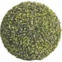 Siepe Sempreverde Balla D 55 Cm